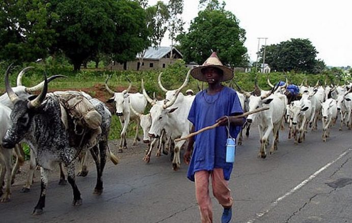 How to End Herdsmen Attacks, by NBA, Others